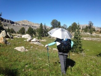 Grand Tetons Part 1: Death Canyon - Alaska Basin Loop
